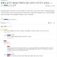 동탄맘까페 근황 (feat. 설거지론 반박할수 없는 증거)