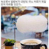 한국에서 곧 카피 할 커피