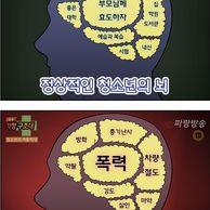 게임하는 청소년의 뇌