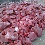 우리가 먹는 돼지고기의 진실.jpg