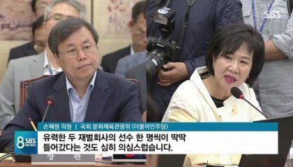 혜원 의원 국회 문화 체육 관광 민주당 재벌 회사 선수