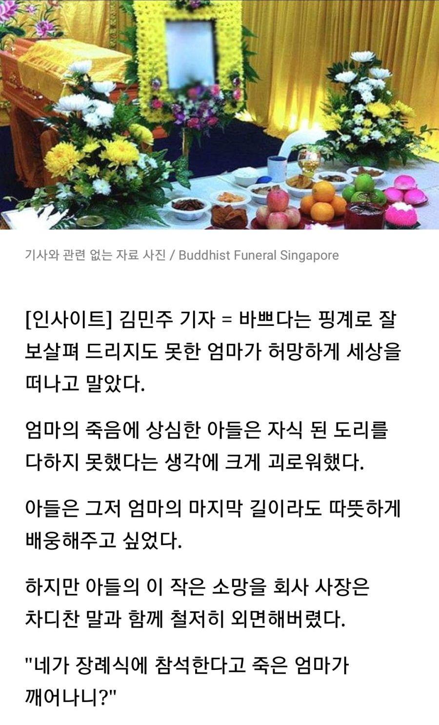 기사 관련 자료 사진 인사이트 김민주 기자 핑계 엄마 허망 세상 엄마 죽음 아들 자식 도리