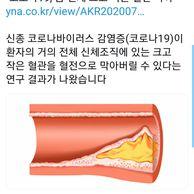 속보) 코로나19, 전신의 혈관을 막는다
