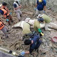 말레이서 실종된 14세 소년, 4.7m짜..