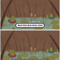 한국인에게서 암내가 덜 나는 이유