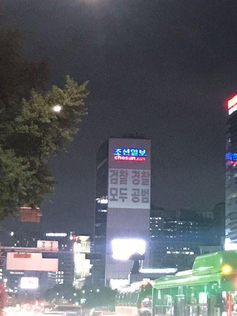 현직 조선일보zpg