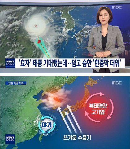 효자 태풍 한증막 더위 폭염 자속 북태평양 고기압 야기 수증기