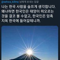 일본 극딜하는 한국인