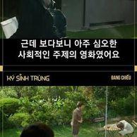 영화 기생충 베트남 현지 반응