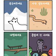 동물들의 신기한 위장술.jpg