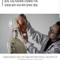 19)리얼돌 근황.news
