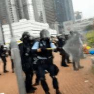 홍콩 외국인 근황 ㅎㄷㄷ.gif